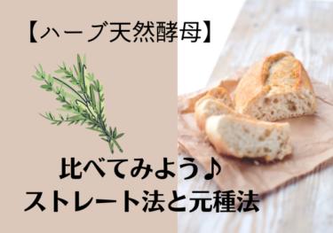 【ハーブ天然酵母】でパンを作る。ストレート法と元種法の違いとは?