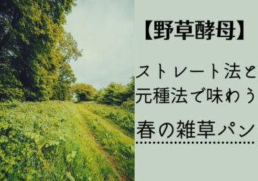 【自家製野草酵母】春の雑草パンをストレート法と元種法で味おう!