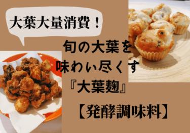 【発酵調味料】大葉大量消費!大葉麹(こうじ)で作るアレンジレシピ